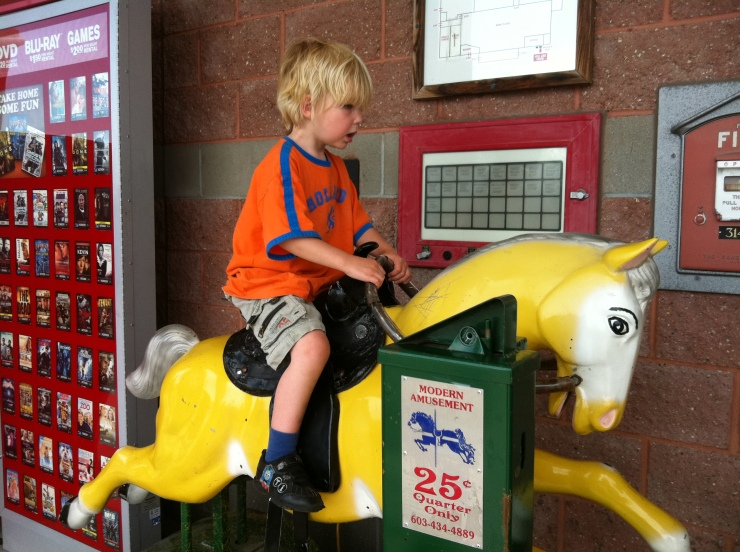 soren horse at market basket