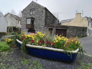Boat with flowers inside - Schull, West Cork