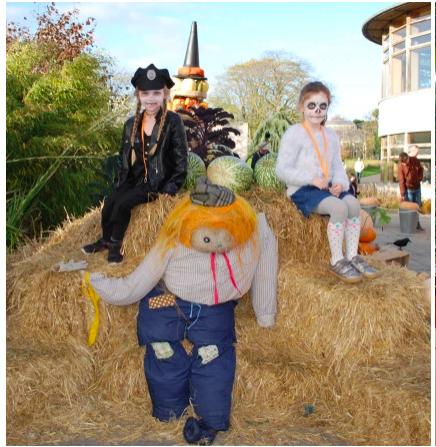 Dublin, Ireland: Glasnevin Cemetery Halloween Mid-Term Tales Tour & BotanticGardens