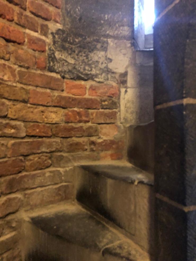 dom steps 5